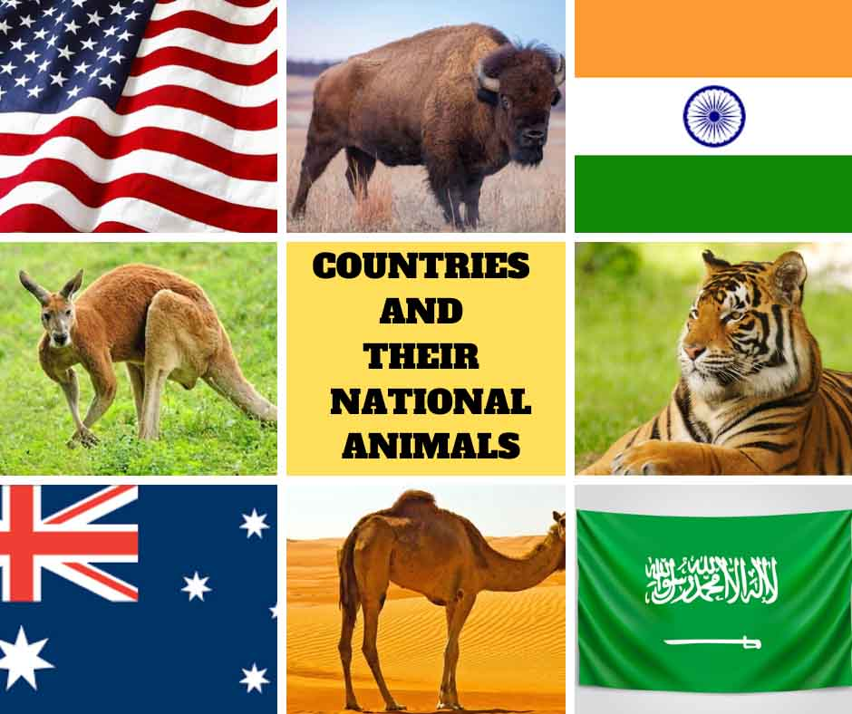 Countries and their National Animals