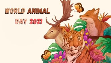 WORLD ANMAL DAY 2021